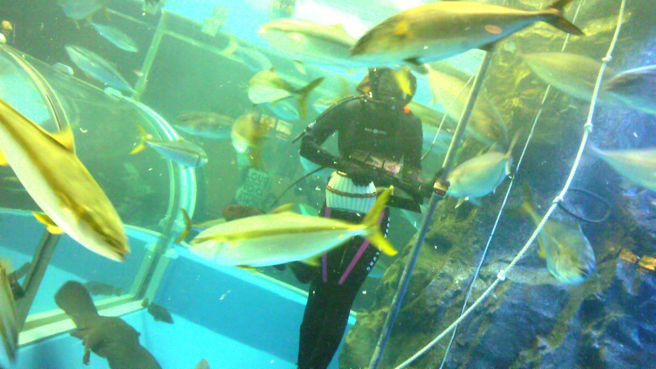 富山旅行『魚津水族館』