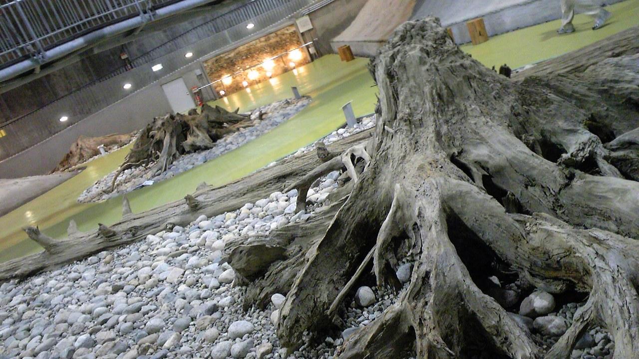 富山旅行『魚津埋没林博物館』