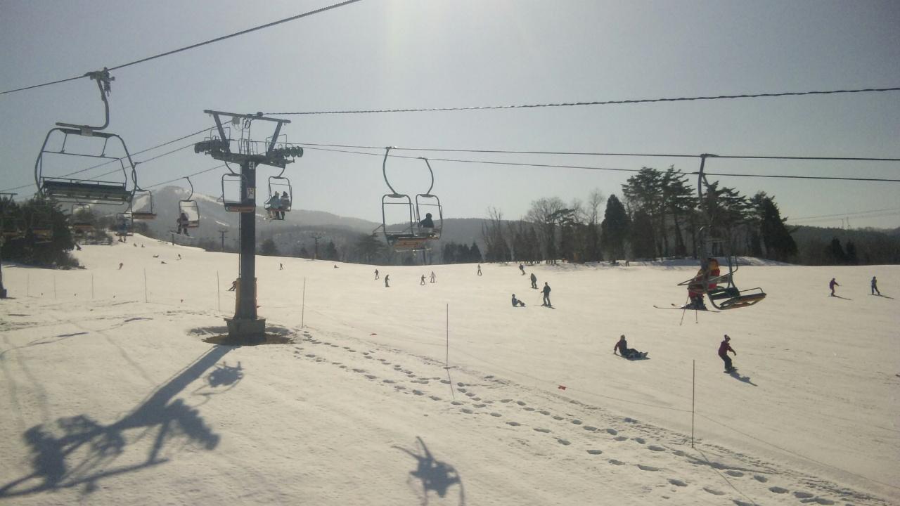 今日はスキージャム勝山