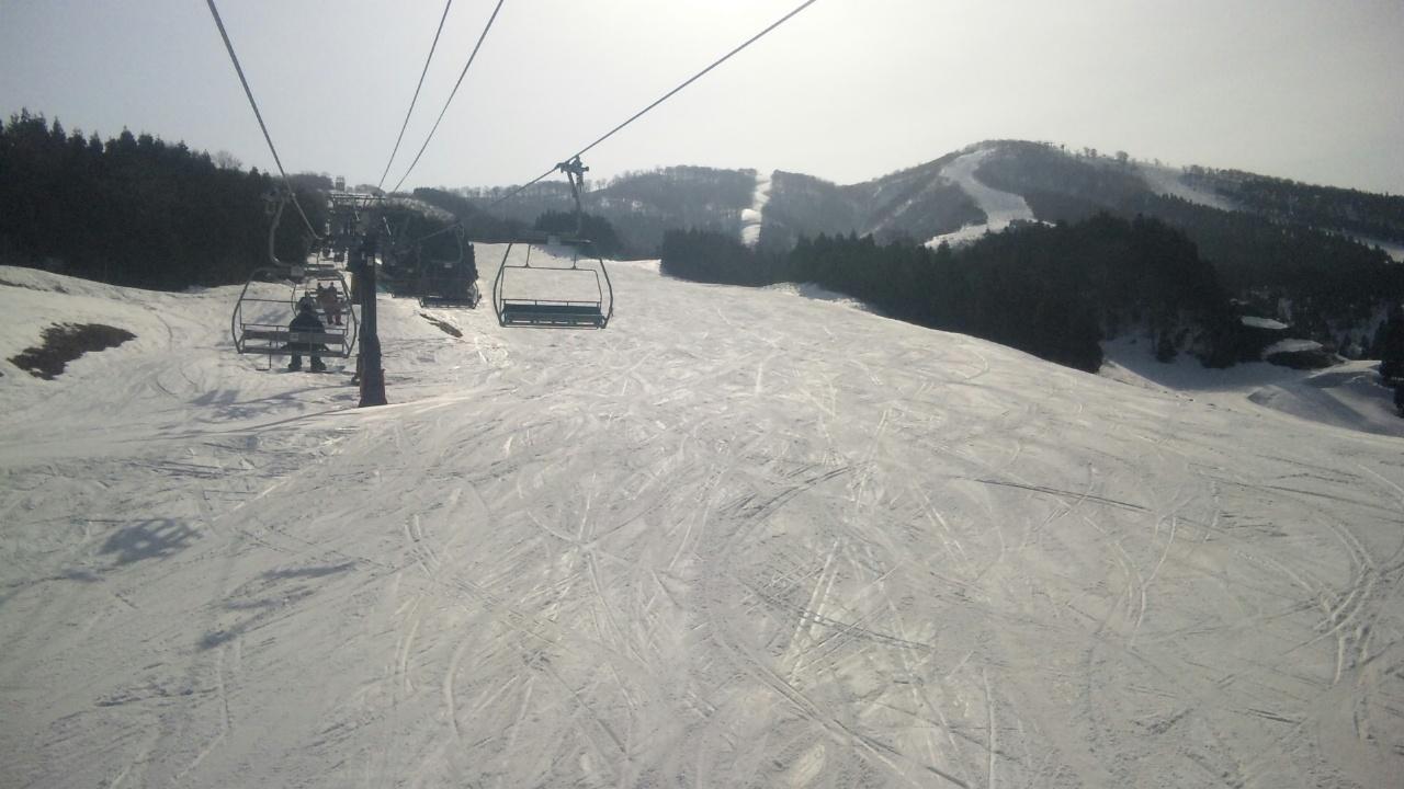 今日のスキージャム勝山